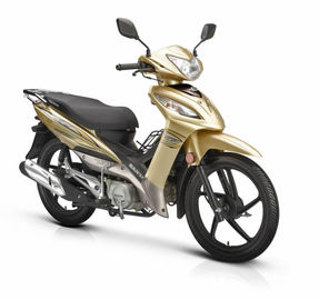 China Front Turning Light Gas Powered Motorcycle Big Size Disc / Drum Braking 110CC Engine supplier
